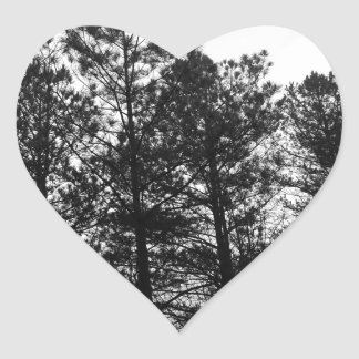 Misty Ethereal  Haunted Trees Forest Woods Fog Heart Sticker