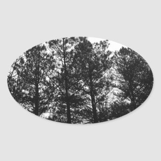 Misty Ethereal  Haunted Trees Forest Woods Fog Oval Sticker