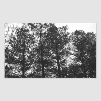 Misty Ethereal  Haunted Trees Forest Woods Fog Rectangular Sticker