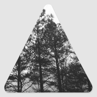 Misty Ethereal  Haunted Trees Forest Woods Fog Triangle Sticker