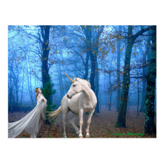 Misty Forest Postcard