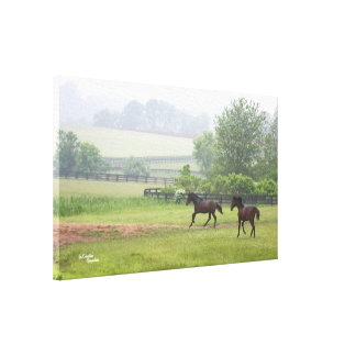 Misty galloping horses Stretched Canvas Print