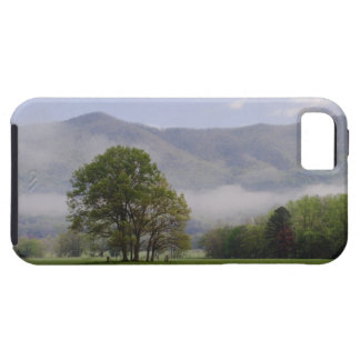 Misty meadow and Rich Mountain Cades Cove iPhone 5 Case