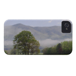 Misty meadow and Rich Mountain, Cades Cove, iPhone 4 Covers