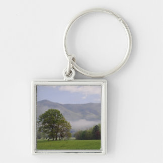 Misty meadow and Rich Mountain, Cades Cove, Key Chain