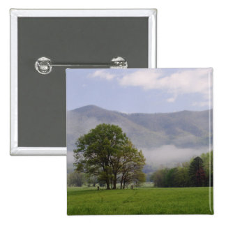 Misty meadow and Rich Mountain, Cades Cove, Pinback Button