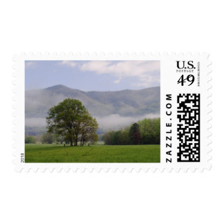 Misty meadow and Rich Mountain, Cades Cove, Postage