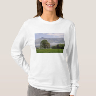 Misty meadow and Rich Mountain, Cades Cove, T-Shirt