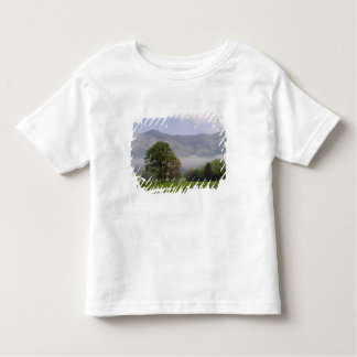 Misty meadow and Rich Mountain, Cades Cove, Toddler T-shirt