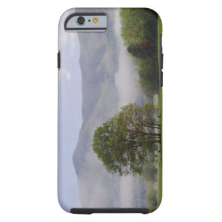 Misty meadow and Rich Mountain, Cades Cove, Tough iPhone 6 Case