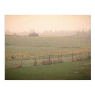 Misty Meadow Postcards