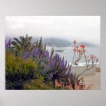Misty Morn in Laguna Poster