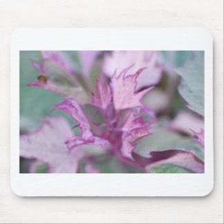 Misty Morning Flower Mouse Pad