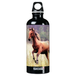 Misty Morning Frolick Horse Photography Water Bottle