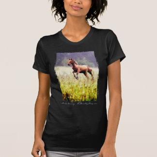 Misty Morning Frolick T-Shirt