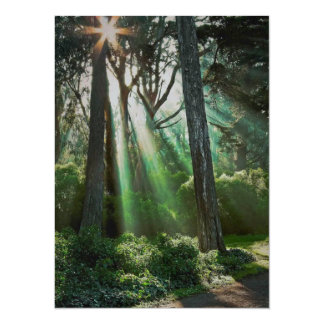 misty morning rays card