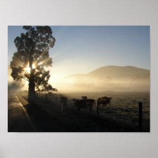 Misty Morning Yarra Valley Poster