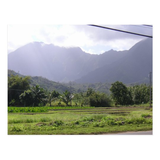 Misty Mountains in Kauai, Hawaii Postcard