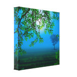 Misty Night Stretched Canvas Print