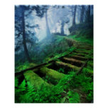Misty Path Through the Woods Poster