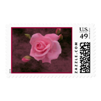 Misty Pink Rose Postage