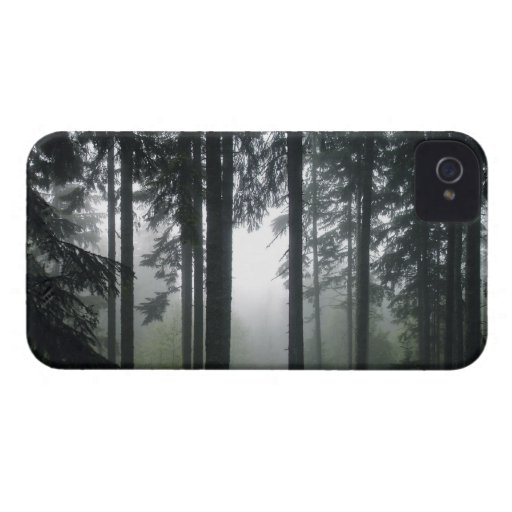 Misty PNW Rainforest Nature Scenery Phone Case