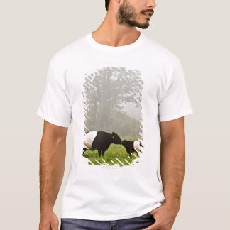 Misty scene of belted galloway cow mothering her T-Shirt