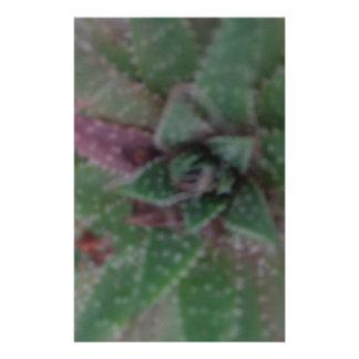 Misty Succulent, Green Purple, Nature, Flora Plant Stationery