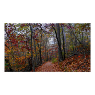Misty Trail in the Colorful Autumn Forest Poster