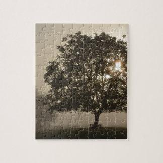 Misty Trees Jigsaw Puzzle