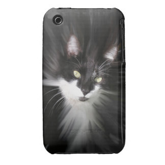 Misty Tuxedo Cat iPhone  3G/3GS iPhone 3 Cover