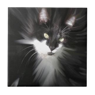 Misty Tuxedo Cat Ceramic Tiles