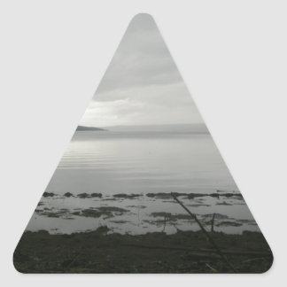 misty_water_colored_memories_by_dragonscot-d4z4e73 triangle sticker
