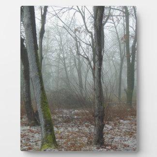 Misty Wood Plaque