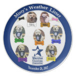 Misty's Weather Litter Plate