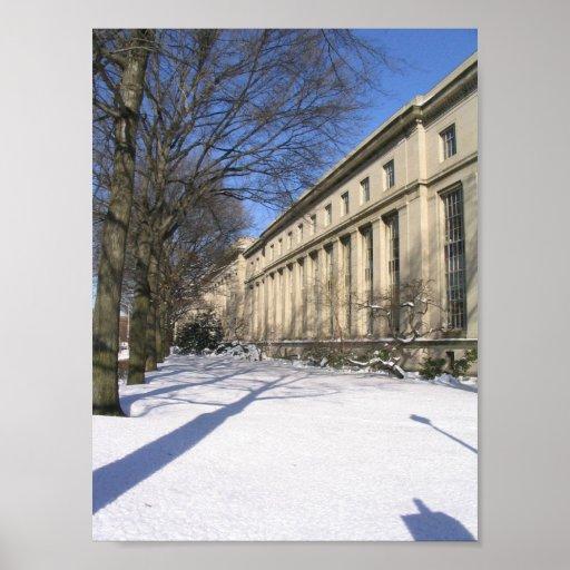 MIT en invierno Impresiones