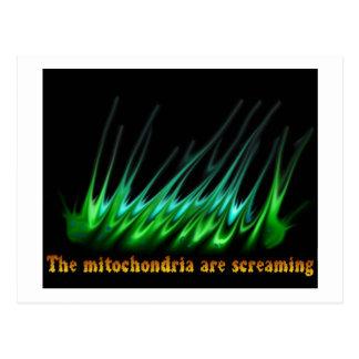 Mitochondria Are Screaming Postcard