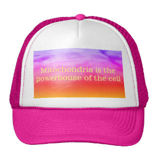 Mitochondria is the powerhouse of the cell hat