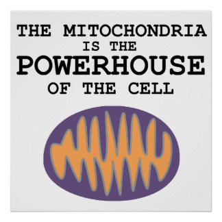 Mitochondria is The Powerhouse - Poster