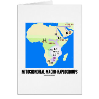 Mitochondrial Macro-Haplogroups MRCA Genealogy Card