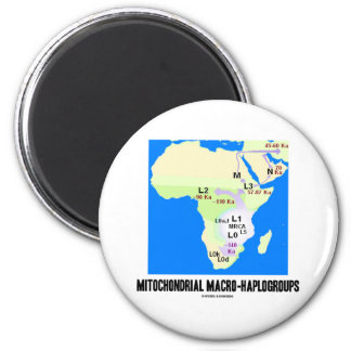 Mitochondrial Macro-Haplogroups MRCA Genealogy Fridge Magnet