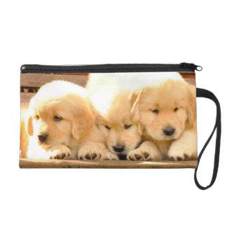 Mitón de 3 perritos del golden retriever