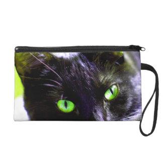 Mitón de ojos verdes de la foto del gato negro