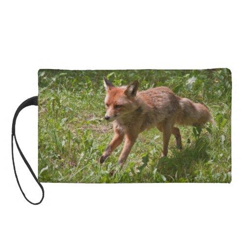 Mitón del Fox