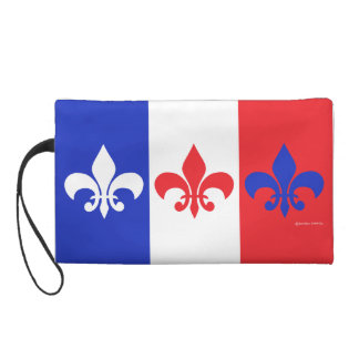 Mitón francés de la flor de lis de la bandera