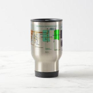 Mitonchondrial Intermembrane Space Diagram 15 Oz Stainless Steel Travel Mug