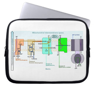 Mitonchondrial Intermembrane Space Diagram Laptop Sleeve