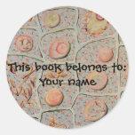 Mitosis bookplate sticker