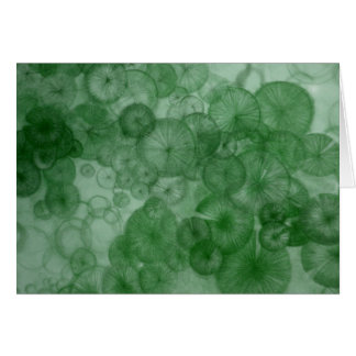 Mitosis (green) as seen in RipRap Journal Greeting Card