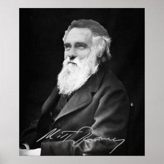 Mitt Romney  Evolution Posters